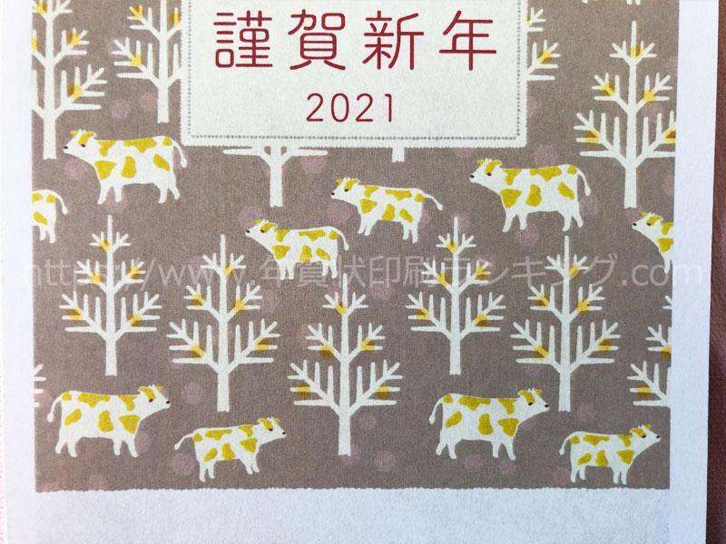 挨拶状ドットコム2021年ナチュラルタイプ N21C095文字の部分の拡大